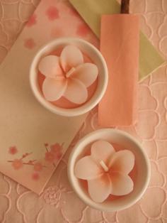 春色ピンクきれい♪